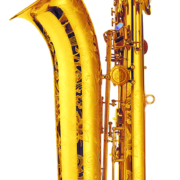 rb-65-gp2