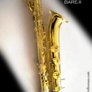 bare-bary5