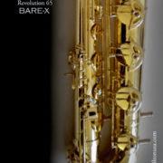 bare-bary9